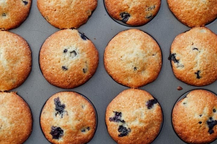 blueberry muffins in a baking pan