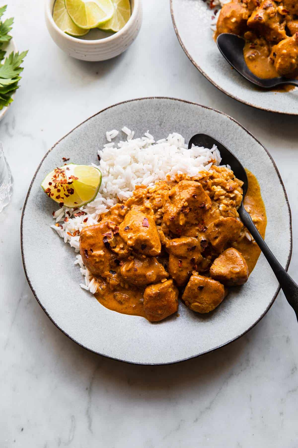 A plate of curry chicken with rice.