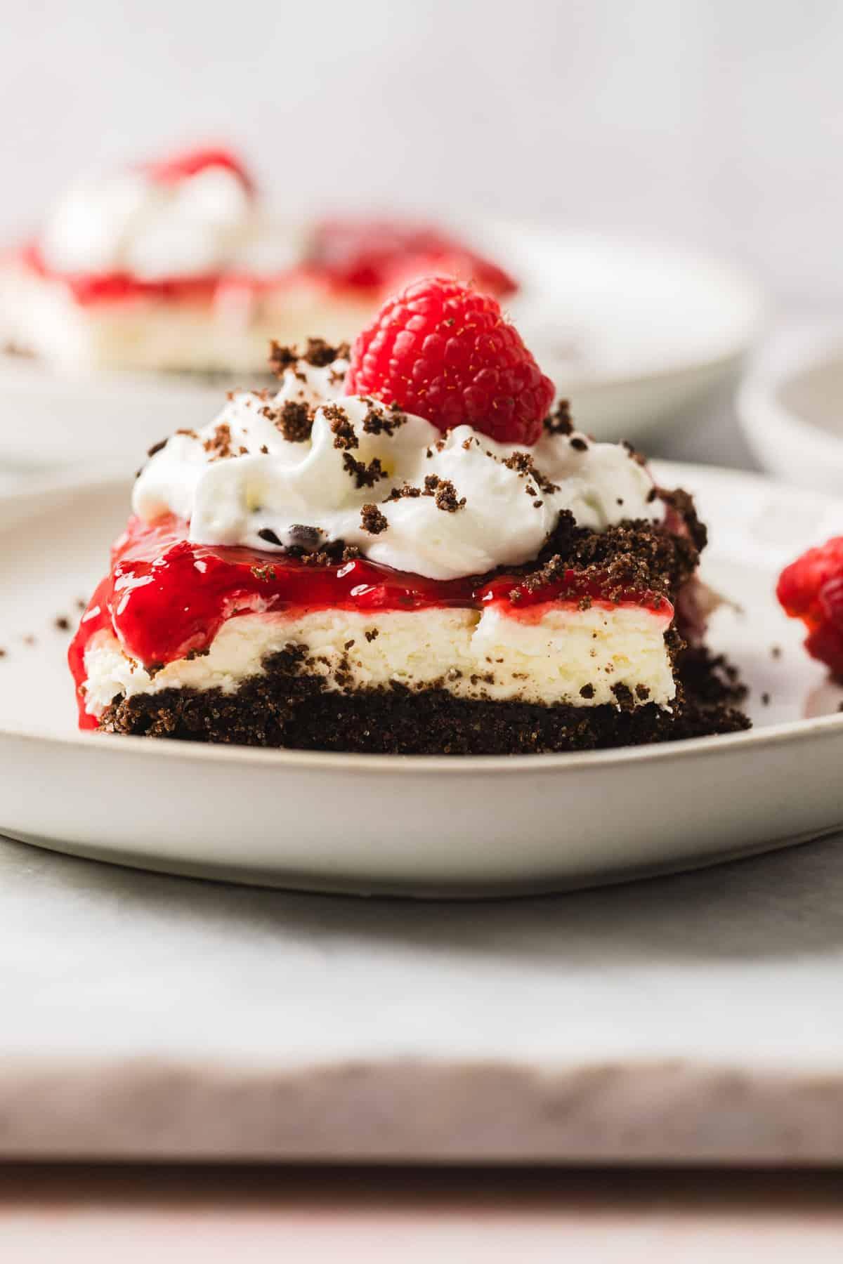 chocolate raspberry dessert on a white plate